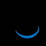 Эмблема (логотип): Футбольный клуб «Виль». Logo: Football Club Wil 1900