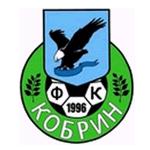 Эмблема (логотип): Футбольный клуб Кобрин. Logo: Football Club Kobrin