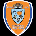 Эмблема (логотип): Футбольный клуб Тыргу-Муреш. Logo: Fotbal Club Municipal Târgu Mureş
